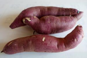 The key to producing sweet potato 365 days per year